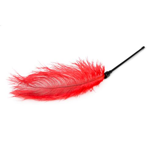 Rode veren kietelaar #5